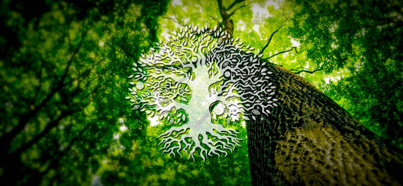 Celtic Tree of Life; the Meaning and History of the Ancient Symbol ...